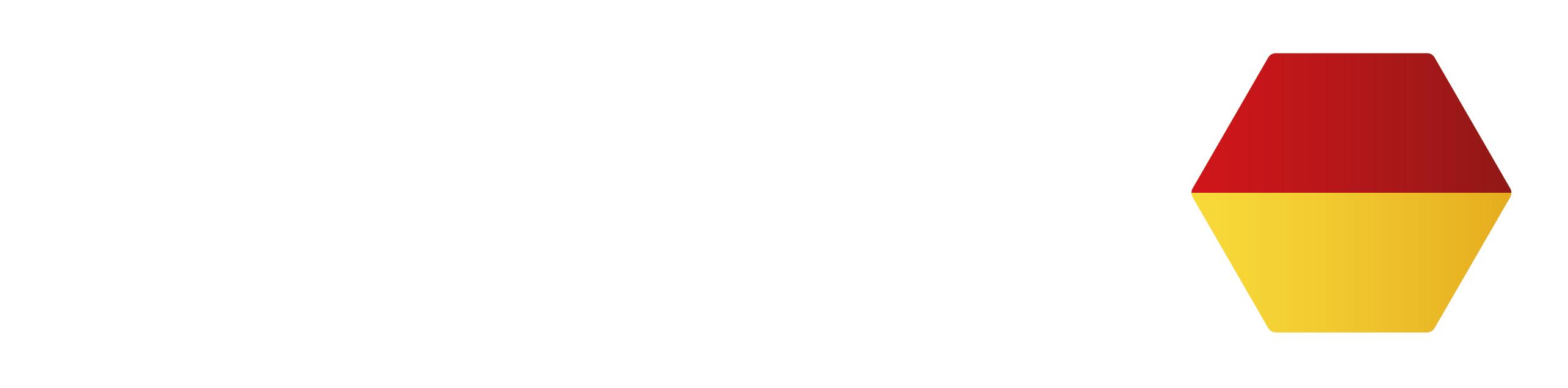 Logo_BMV_Invertiert
